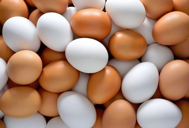 The effect of avian flu in U.S. and egg supply in Canada