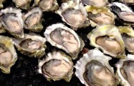Food recall warning: Oysters harvested from British Columbia (BC) coastal waters