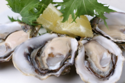 Certain Pacific Oysters recalled due to a marine biotoxin which causes Paralytic Shellfish Poisoning (PSP)