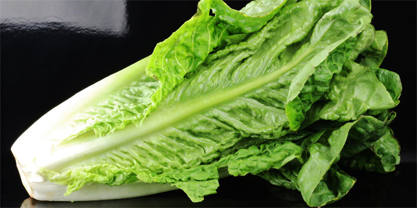 Public Health Notice - Outbreak of E. coli infections linked to romaine lettuce
