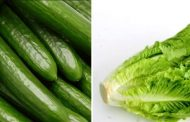 Update to PHNs related to E. coli in romaine lettuce and Salmonella in English cucumbers