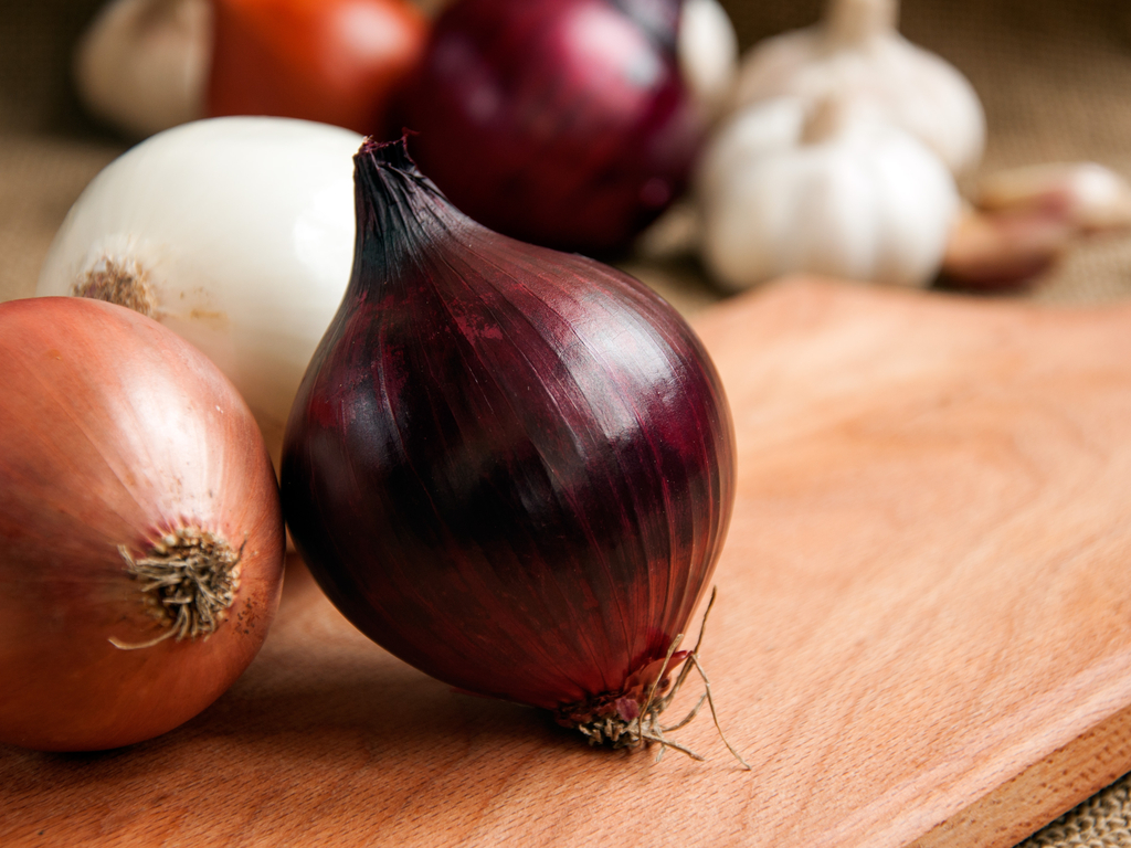 Freshpoint Foodservice brand red and jumbo onions grown by Thomson International Inc. and imported from the USA recalled due to Salmonella